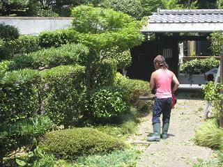 0707-niwasi.jpg