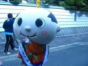 1104-hachimaru1.jpg