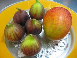 20090518-fruit.jpg